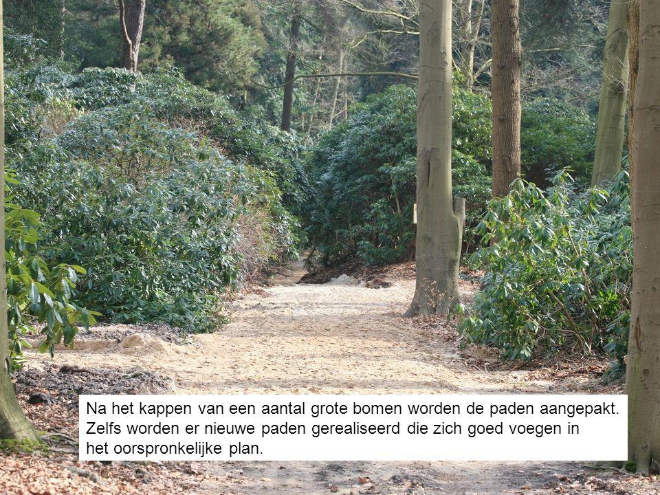 Na het kappen van een aantal grote bomen worden de paden aangepakt.