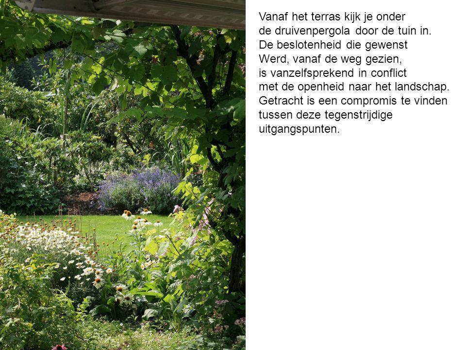 Vanaf het terras kijk je onder de druivenpergola door de tuin in.
