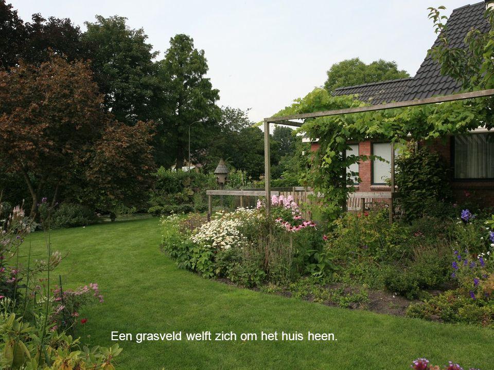 Een grasveld welft zich om het huis heen.