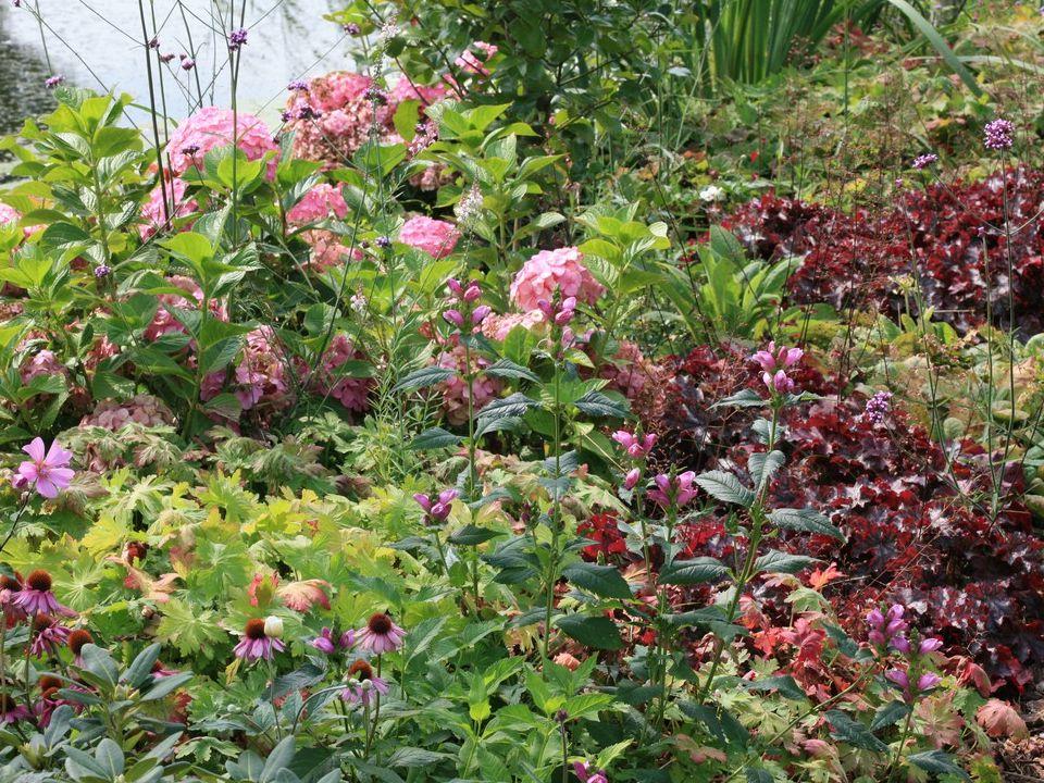 Langs de oevers een semi-natuurlijke beplanting in harmonie met de natuuroevers van de omgeving.