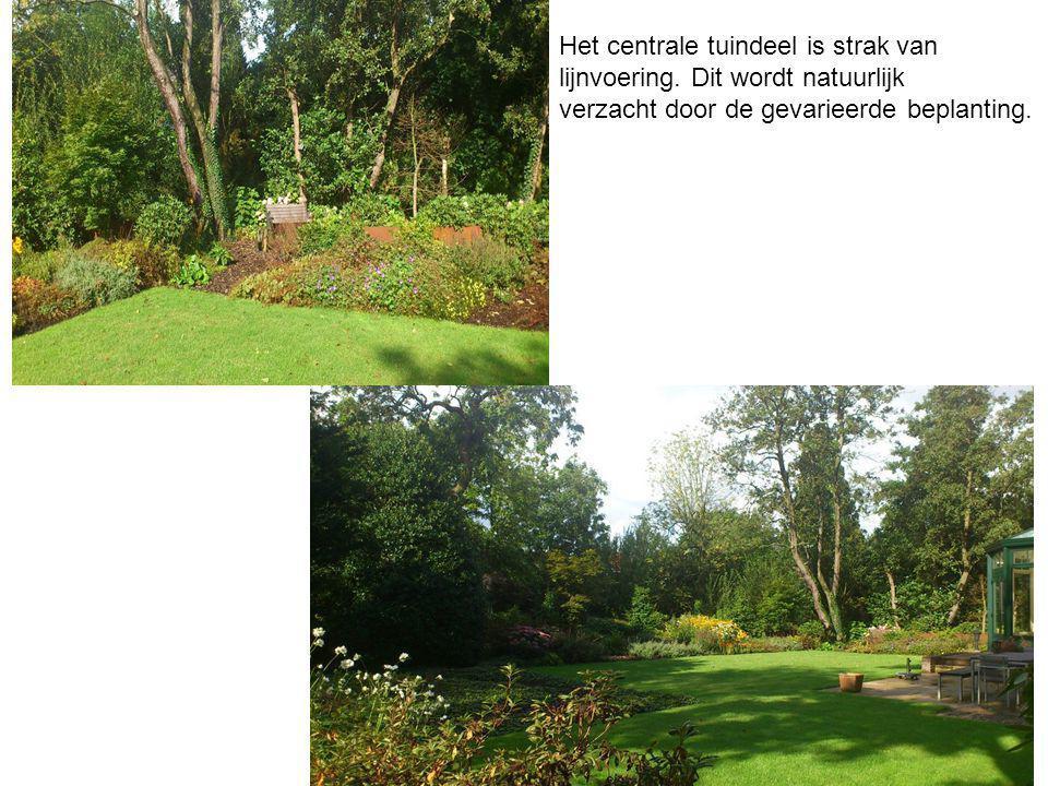Het centrale tuindeel is strak van lijnvoering. Dit wordt natuurlijk verzacht door de gevarieerde beplanting.