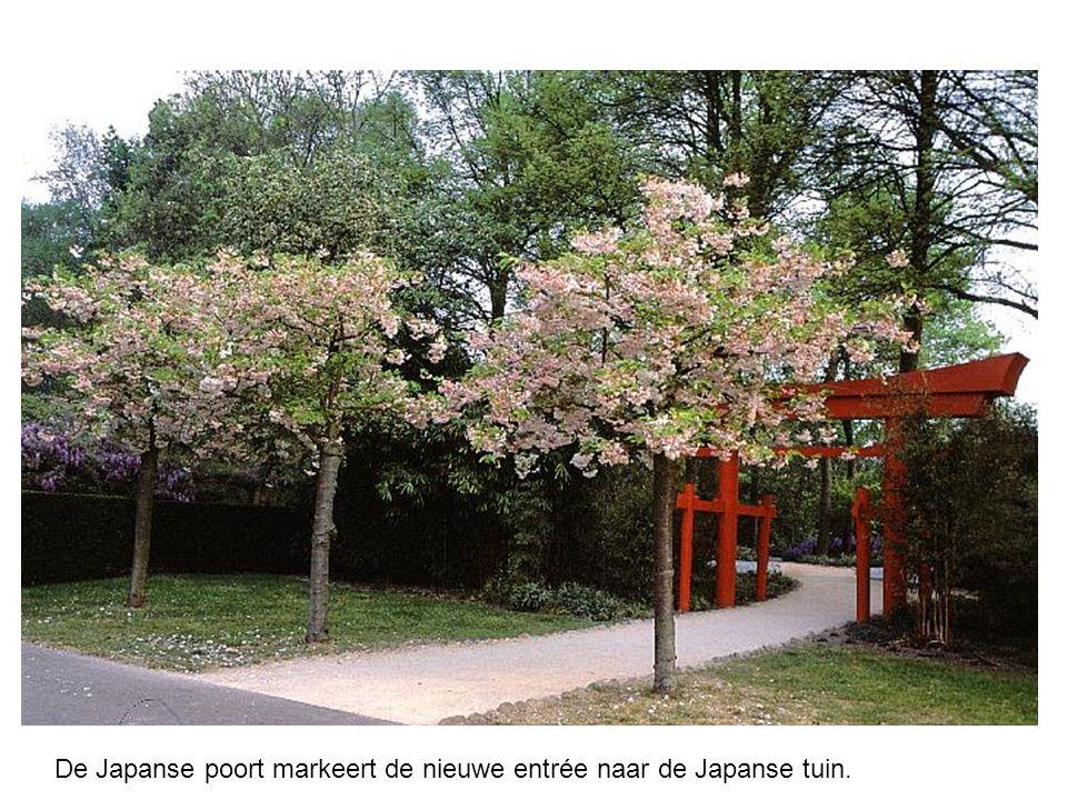 De Japanse poort markeert de nieuwe entrée naar de Japanse tuin.