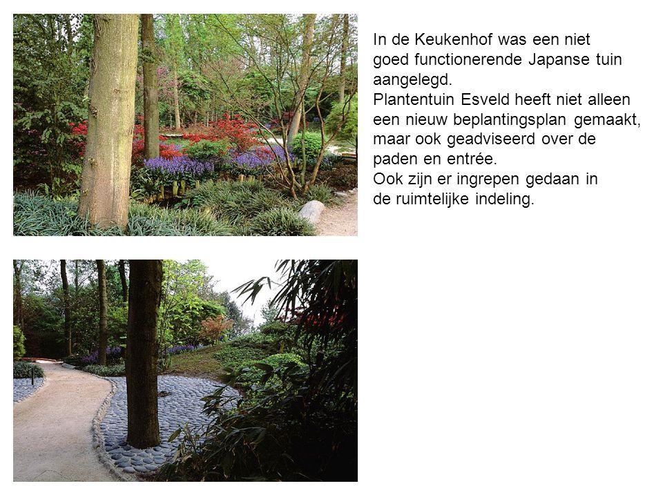 In de Keukenhof was een niet goed functionerende Japanse tuin aangelegd. Plantentuin Esveld heeft niet alleen een nieuw beplantingsplan gemaakt, maar
