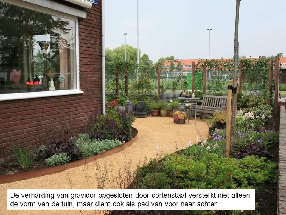 De verharding van gravidor opgesloten door cortenstaal versterkt niet alleen de vorm van de tuin, maar dient ook als pad van voor naar achter.