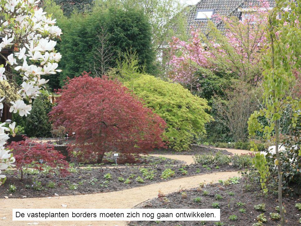 De vasteplanten borders moeten zich nog gaan ontwikkelen.