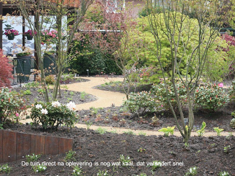 De tuin direct na oplevering is nog wat kaal, dat verandert snel.