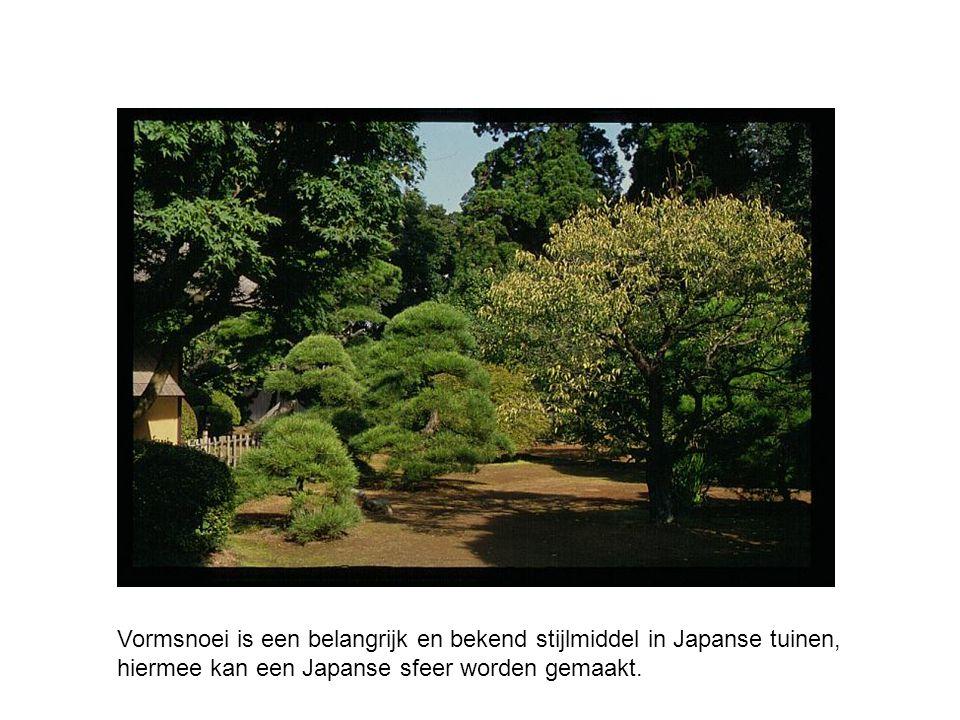 Vormsnoei is een belangrijk en bekend stijlmiddel in Japanse tuinen, hiermee kan een Japanse sfeer worden gemaakt.