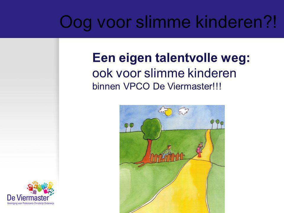 Oog voor slimme kinderen?! Een eigen talentvolle weg: ook voor slimme kinderen binnen VPCO De Viermaster!!!