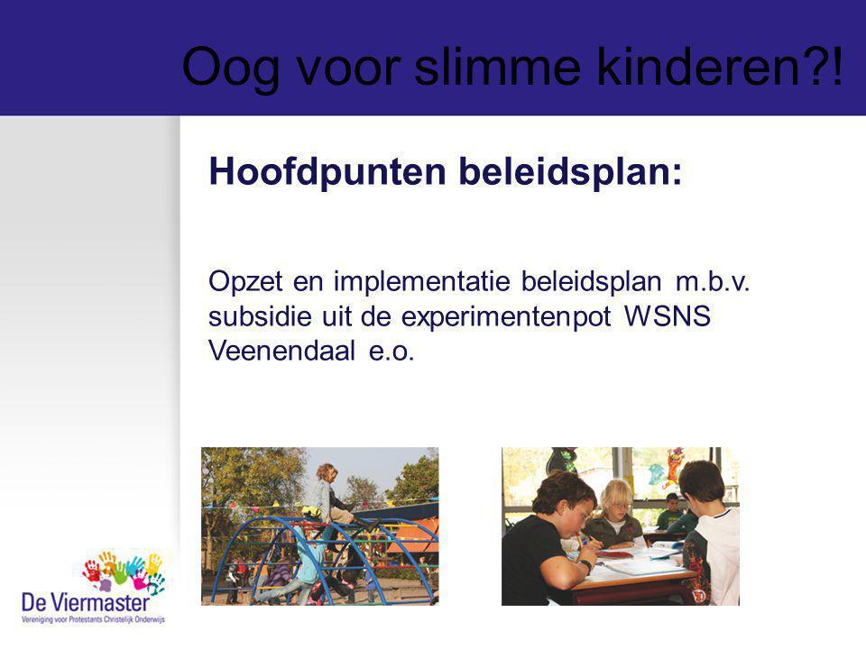 Oog voor slimme kinderen?! Hoofdpunten beleidsplan: Opzet en implementatie beleidsplan m.b.v. subsidie uit de experimentenpot WSNS Veenendaal e.o.