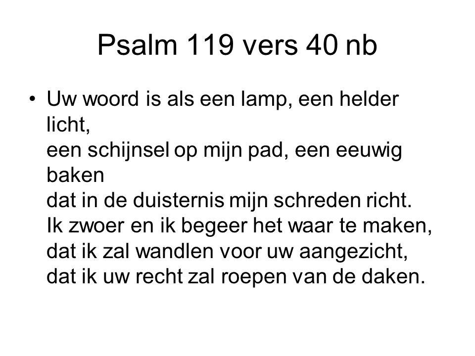 Psalm 119 vers 40 nb Uw woord is als een lamp, een helder licht, een schijnsel op mijn pad, een eeuwig baken dat in de duisternis mijn schreden richt.