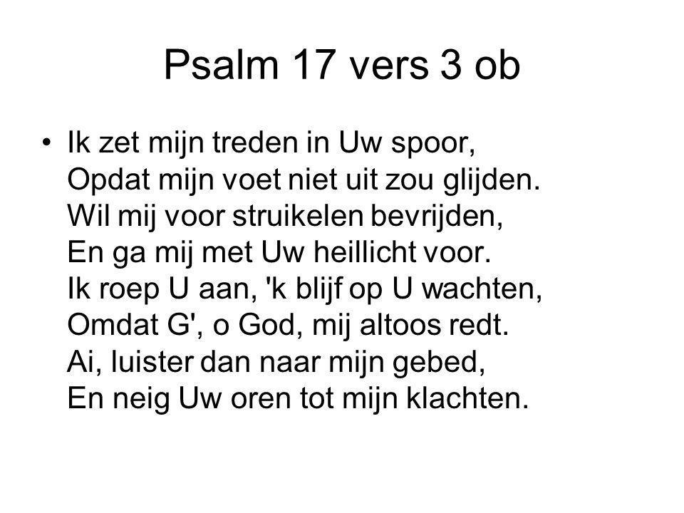 Psalm 17 vers 3 ob Ik zet mijn treden in Uw spoor, Opdat mijn voet niet uit zou glijden. Wil mij voor struikelen bevrijden, En ga mij met Uw heillicht