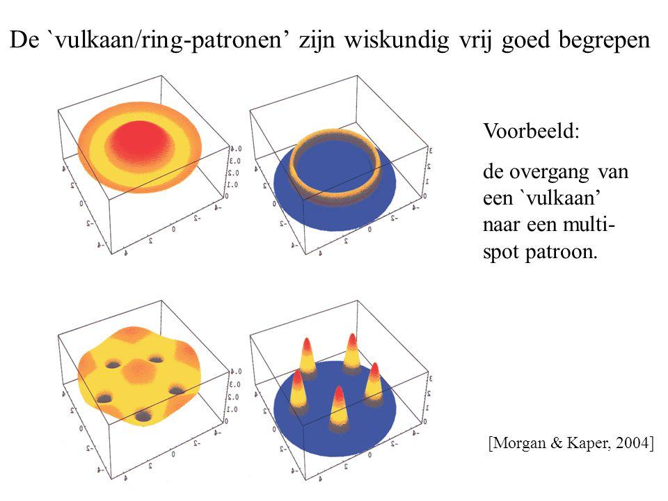 De `vulkaan/ring-patronen' zijn wiskundig vrij goed begrepen [Morgan & Kaper, 2004] Voorbeeld: de overgang van een `vulkaan' naar een multi- spot patr