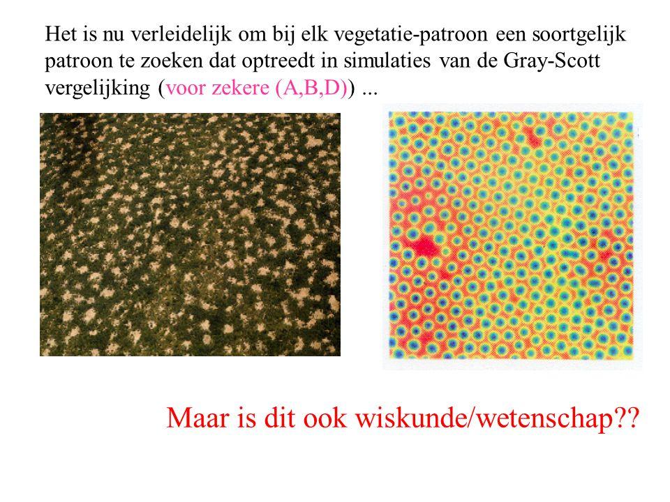 Het is nu verleidelijk om bij elk vegetatie-patroon een soortgelijk patroon te zoeken dat optreedt in simulaties van de Gray-Scott vergelijking (voor
