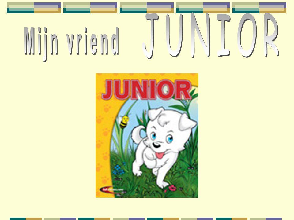 Een stukje uit het spel Junior en zijn baasje waren de beste vriendjes en deden alles samen.
