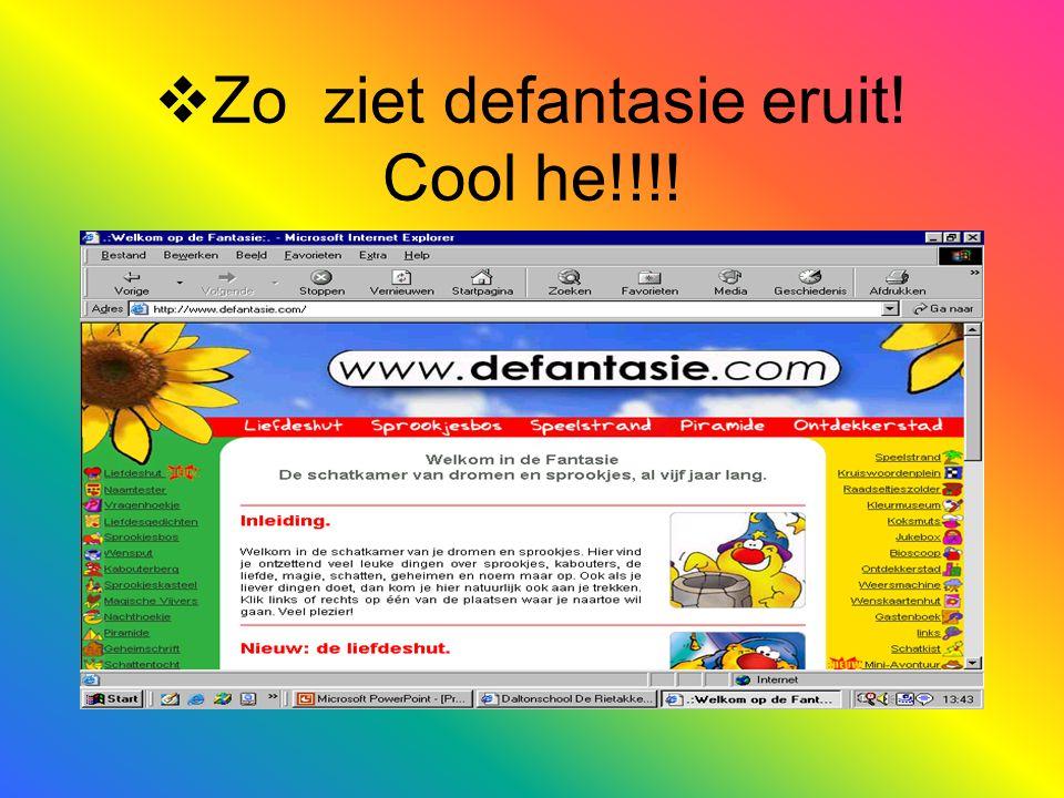  Wat we er leuk aan vinden  Je kan best wel veel doen op defantasie.com zoals:allerei spelletjes, je vorige leven, taal dingen,reken dingen enz.
