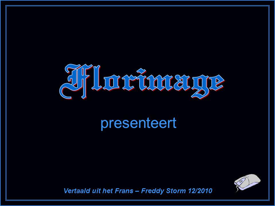 presenteert Vertaald uit het Frans – Freddy Storm 12/2010