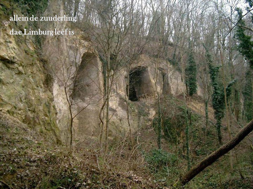 Wie sjoên ôs Limburg is begrip toch neemes