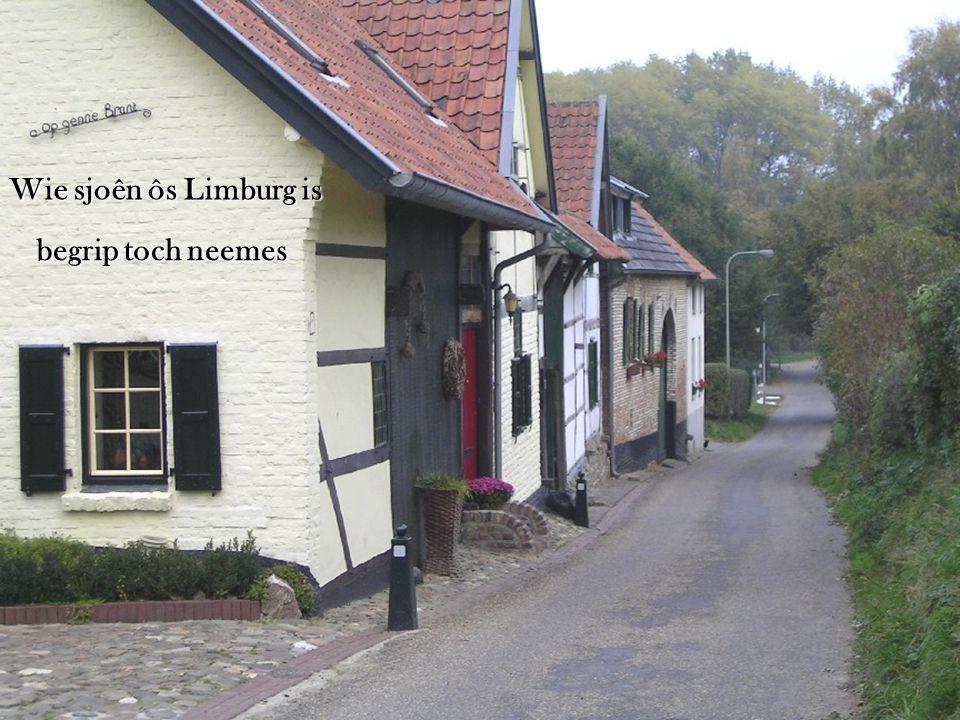 en dink aan Limburg trök