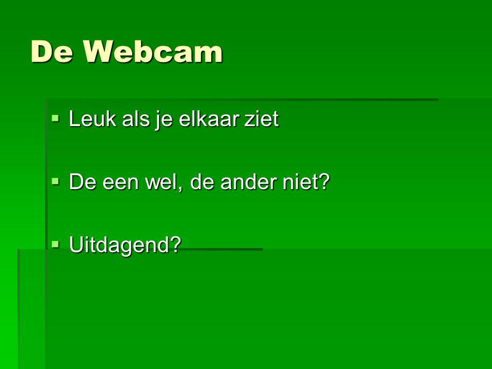 De Webcam  Leuk als je elkaar ziet  De een wel, de ander niet?  Uitdagend?