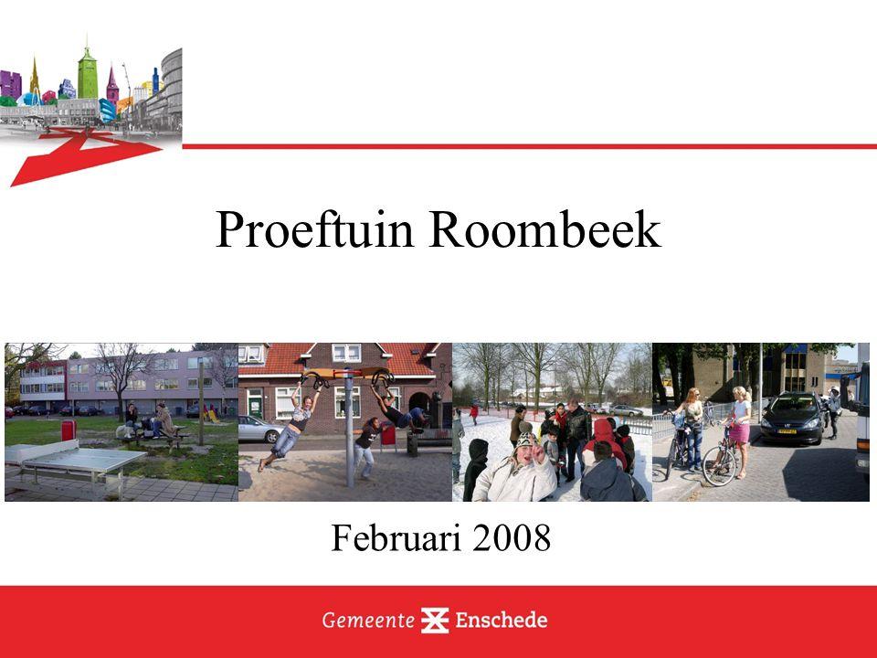 Resultaat: vier 'producten' Programma van wensen Project Roomblik ICT / beeldcommunicatie Geleerde lessen
