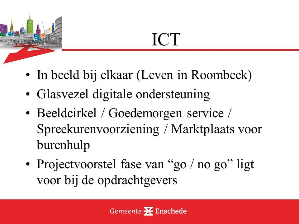 In beeld bij elkaar (Leven in Roombeek) Glasvezel digitale ondersteuning Beeldcirkel / Goedemorgen service / Spreekurenvoorziening / Marktplaats voor