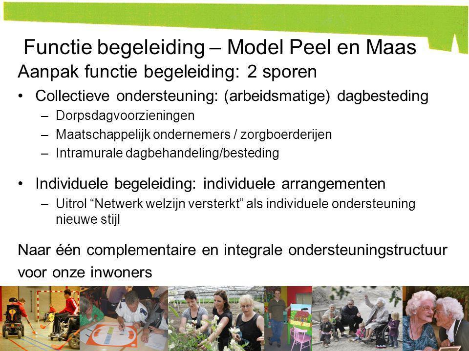 Functie begeleiding – Model Peel en Maas Aanpak functie begeleiding: 2 sporen Collectieve ondersteuning: (arbeidsmatige) dagbesteding –Dorpsdagvoorzie