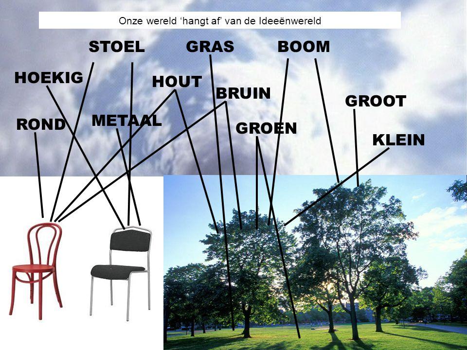 STOELBOOM HOUT METAAL GROEN BRUIN GROOT KLEIN HOEKIG ROND GRAS Onze wereld 'hangt af' van de Ideeënwereld