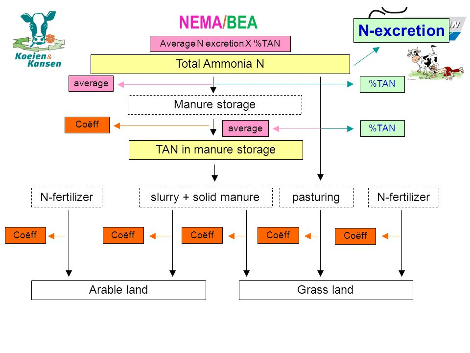 NEMA/BEA Total Ammonia N Manure storage pasturingslurry + solid manure Grass landArable land N-fertilizer TAN in manure storage N-excretion %TAN Coëff average Average N excretion X %TAN