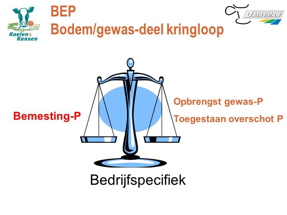 BEP Bodem/gewas-deel kringloop Opbrengst gewas-P Toegestaan overschot P Bemesting-P Bedrijfspecifiek