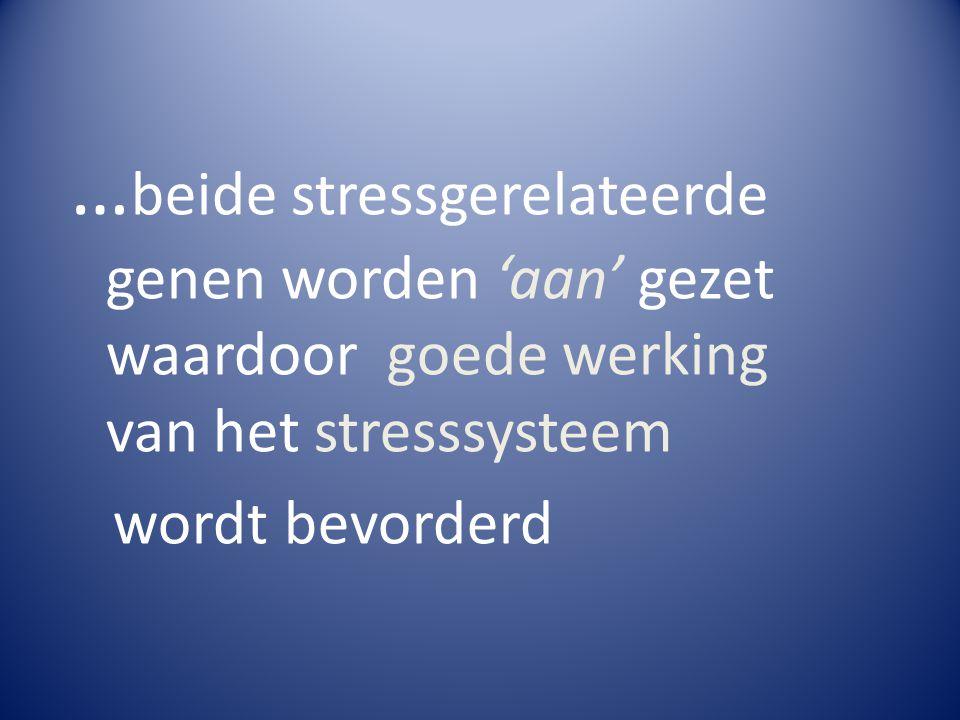 … beide stressgerelateerde genen worden 'aan' gezet waardoor goede werking van het stresssysteem wordt bevorderd