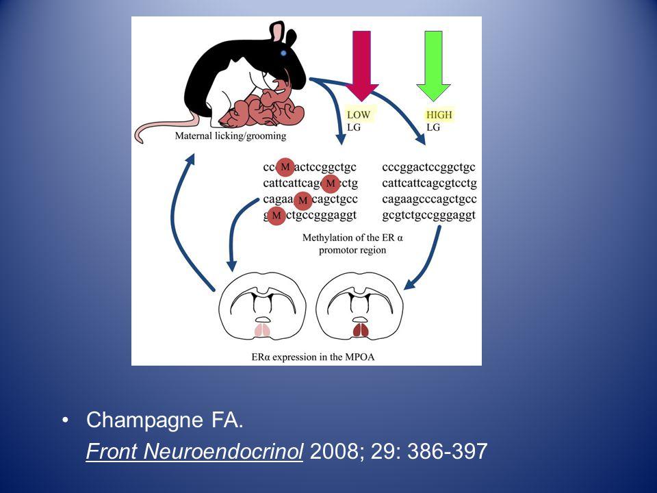 Champagne FA. Front Neuroendocrinol 2008; 29: 386-397