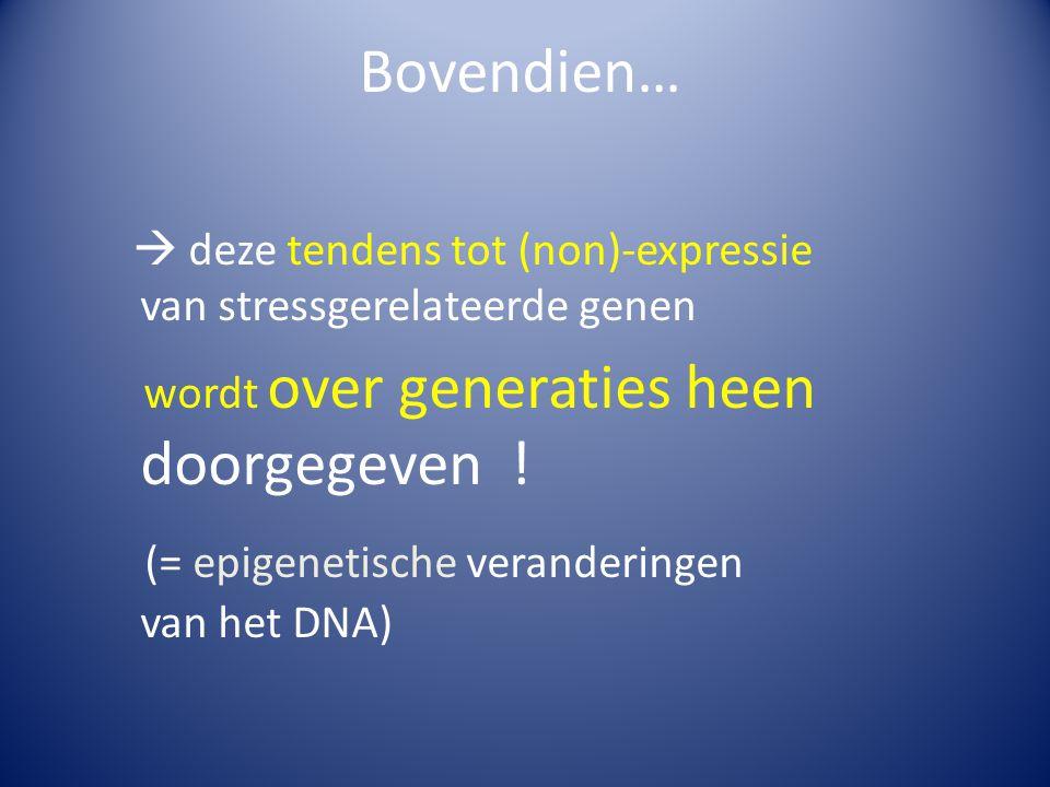 Bovendien…  deze tendens tot (non)-expressie van stressgerelateerde genen wordt over generaties heen doorgegeven ! (= epigenetische veranderingen van