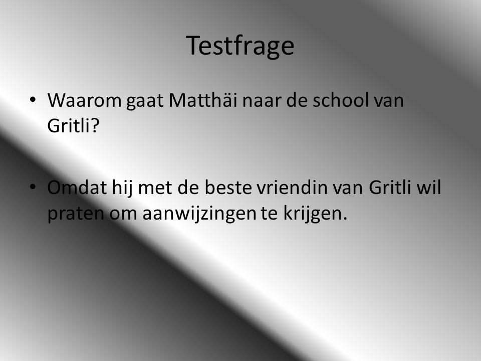 Testfrage Waarom gaat Matthäi naar de school van Gritli? Omdat hij met de beste vriendin van Gritli wil praten om aanwijzingen te krijgen.