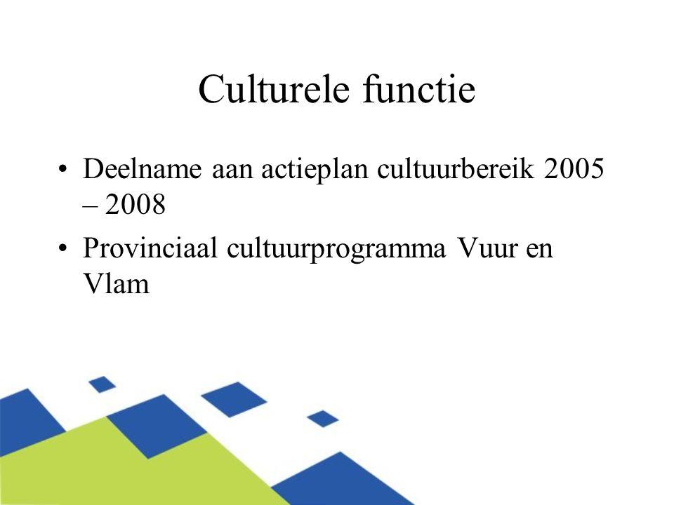 Culturele functie Deelname aan actieplan cultuurbereik 2005 – 2008 Provinciaal cultuurprogramma Vuur en Vlam