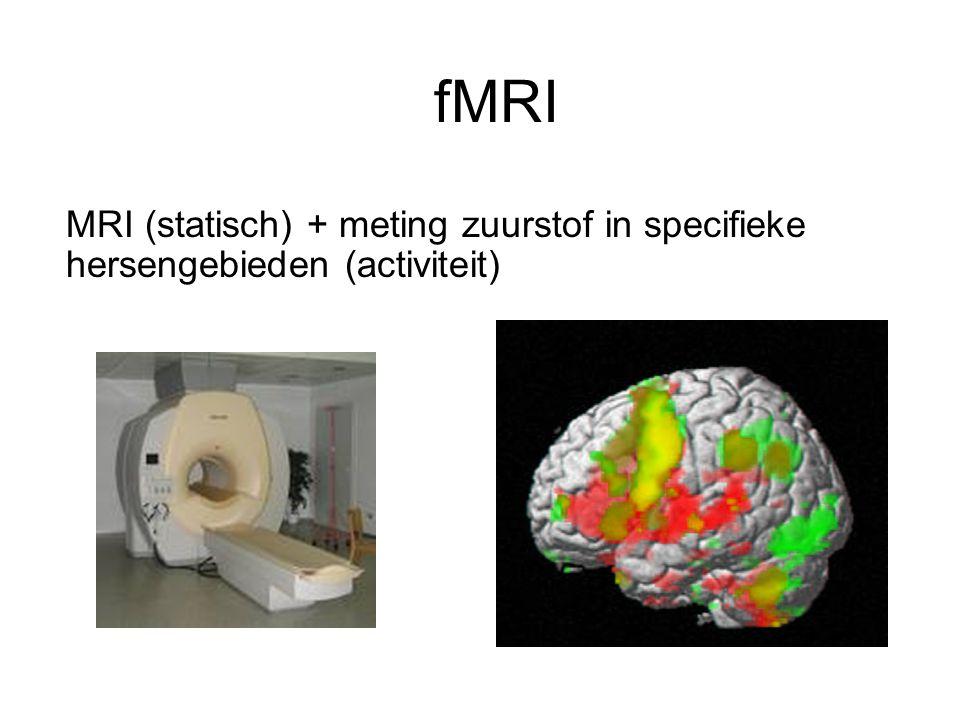 fMRI MRI (statisch) + meting zuurstof in specifieke hersengebieden (activiteit)
