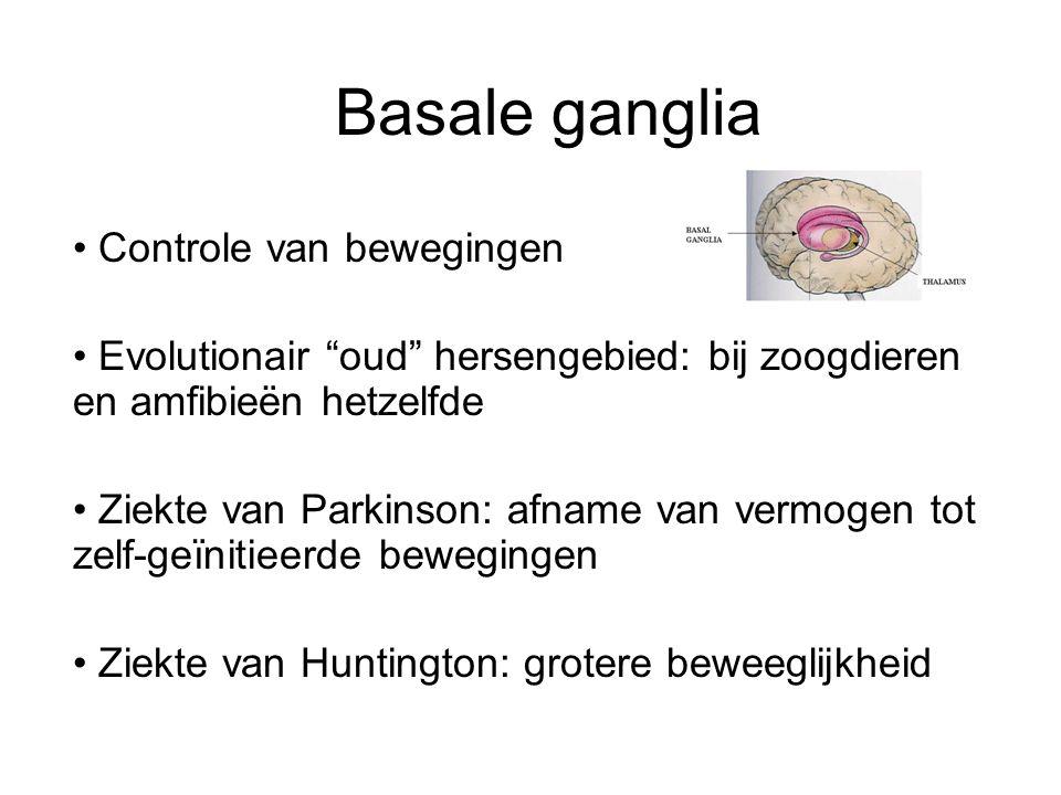 """Basale ganglia Controle van bewegingen Evolutionair """"oud"""" hersengebied: bij zoogdieren en amfibieën hetzelfde Ziekte van Parkinson: afname van vermoge"""