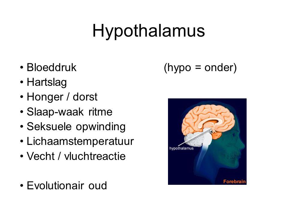 Hypothalamus Bloeddruk(hypo = onder) Hartslag Honger / dorst Slaap-waak ritme Seksuele opwinding Lichaamstemperatuur Vecht / vluchtreactie Evolutionai