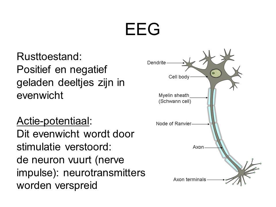 EEG Rusttoestand: Positief en negatief geladen deeltjes zijn in evenwicht Actie-potentiaal: Dit evenwicht wordt door stimulatie verstoord: de neuron v