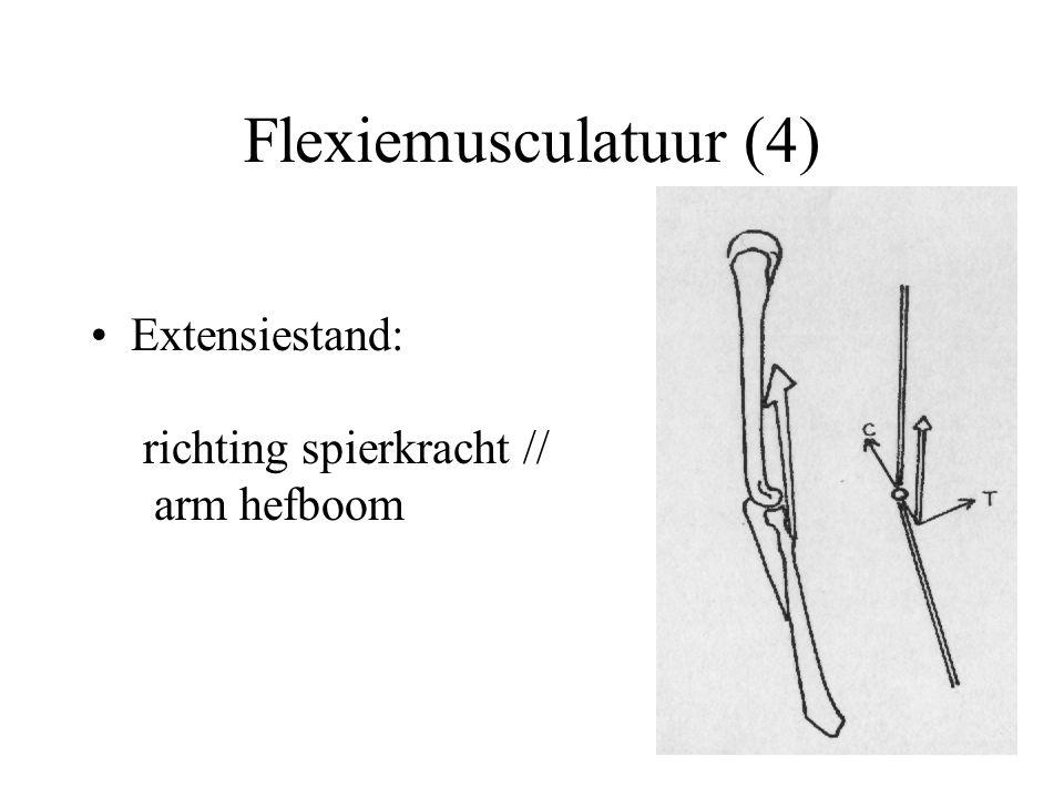 Flexiemusculatuur (4) Extensiestand: richting spierkracht // arm hefboom