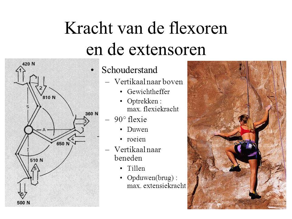 Kracht van de flexoren en de extensoren Schouderstand –Vertikaal naar boven Gewichtheffer Optrekken : max.