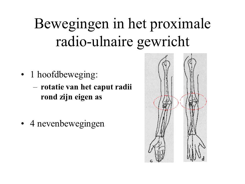 Bewegingen in het proximale radio-ulnaire gewricht 1 hoofdbeweging: –rotatie van het caput radii rond zijn eigen as 4 nevenbewegingen
