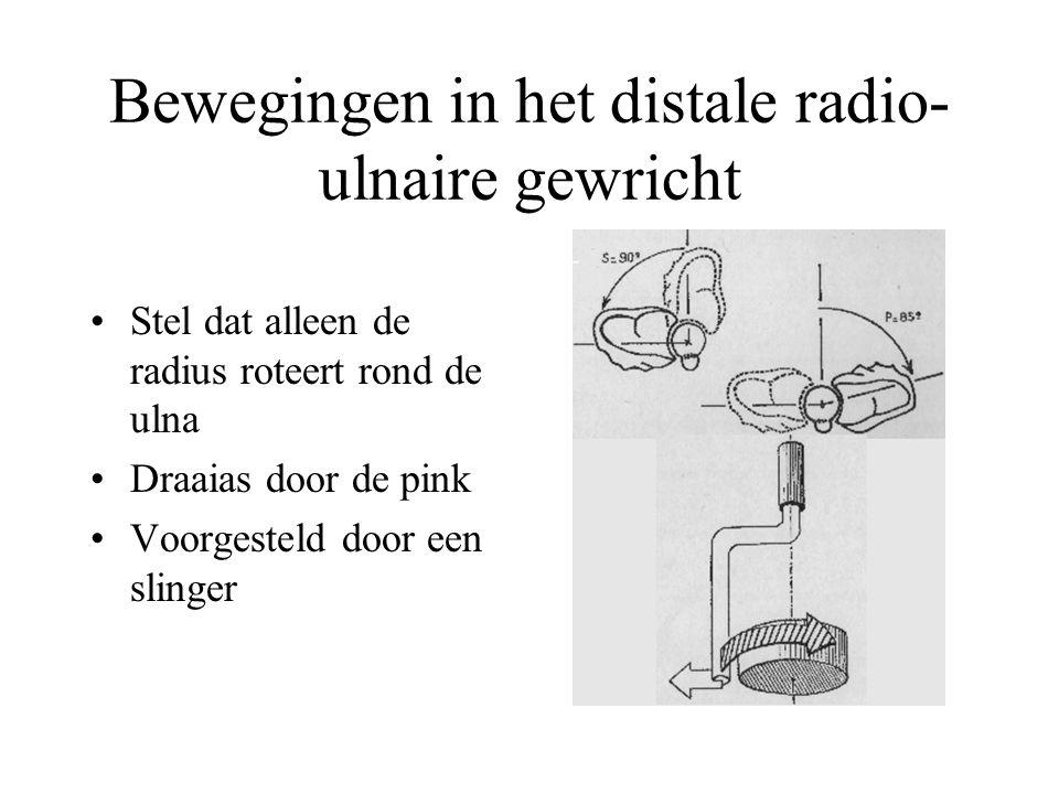 Bewegingen in het distale radio- ulnaire gewricht Stel dat alleen de radius roteert rond de ulna Draaias door de pink Voorgesteld door een slinger