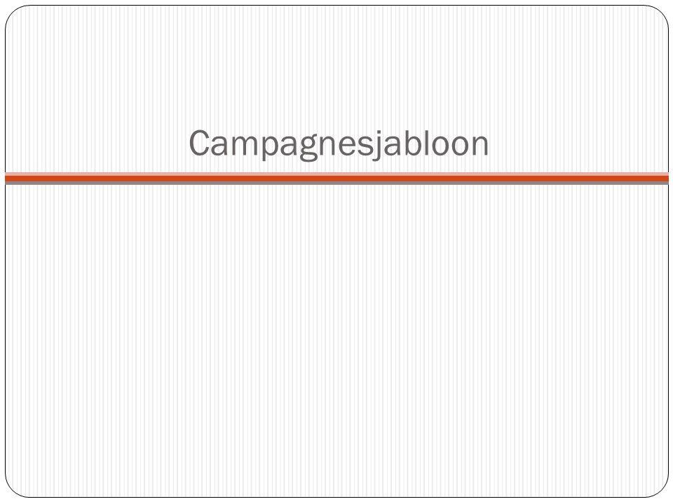 Hierbij vindt u alle campagneactiviteiten die ik gemaakt heb