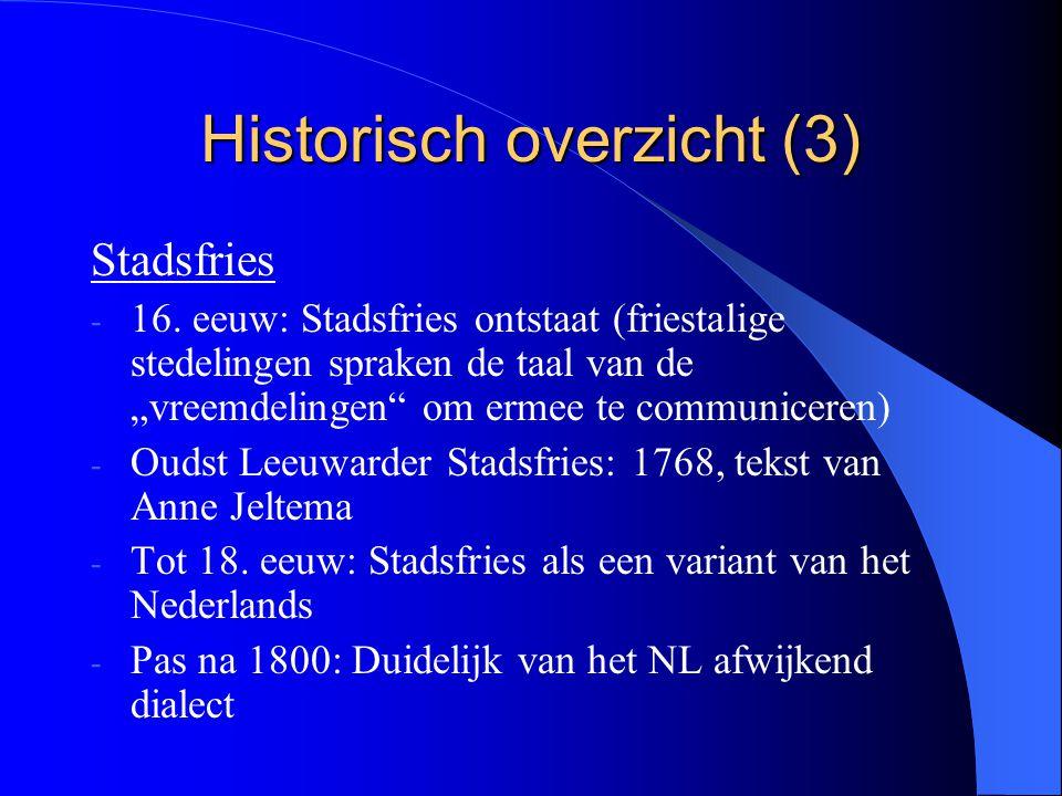 """Historisch overzicht (3) Stadsfries - 16. eeuw: Stadsfries ontstaat (friestalige stedelingen spraken de taal van de """"vreemdelingen"""" om ermee te commun"""