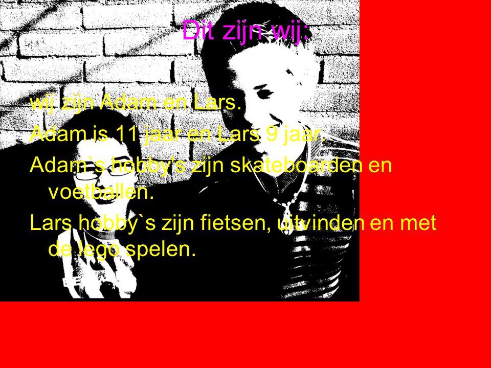 Dit zijn wij: wij zijn Adam en Lars.Adam is 11 jaar en Lars 9 jaar.
