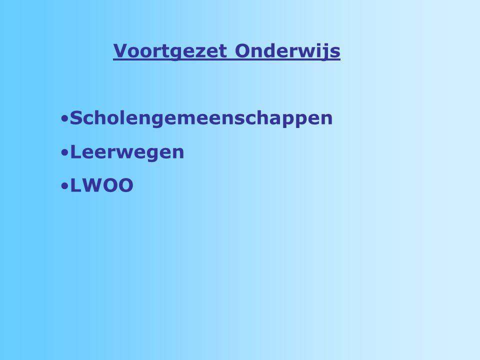 Voortgezet Onderwijs Scholengemeenschappen Leerwegen LWOO