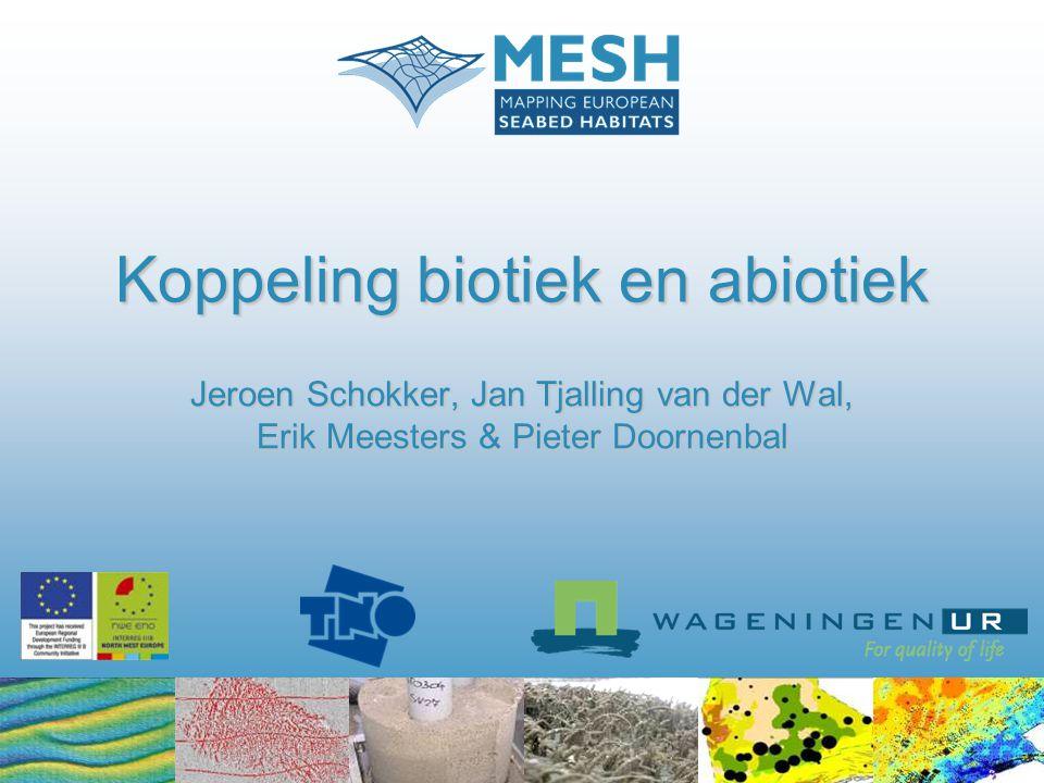Doel Doel MESH: -Methode-ontwikkeling voor het karteren van mariene zeebodemhabitats Doel presentatie: -Voorspellen van de verbreiding van biologische zeebodemgemeenschappen op het NCP op basis van gebiedsdekkende abiotische datasets