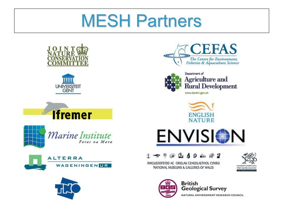 MESH Partners