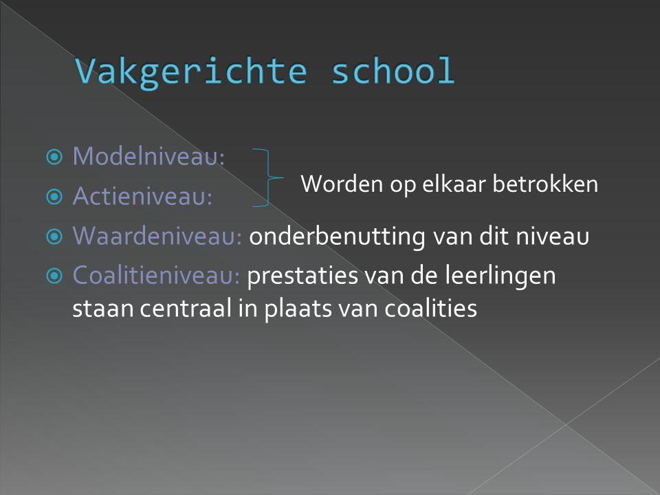  Modelniveau:  Actieniveau:  Waardeniveau: onderbenutting van dit niveau  Coalitieniveau: prestaties van de leerlingen staan centraal in plaats van coalities Worden op elkaar betrokken