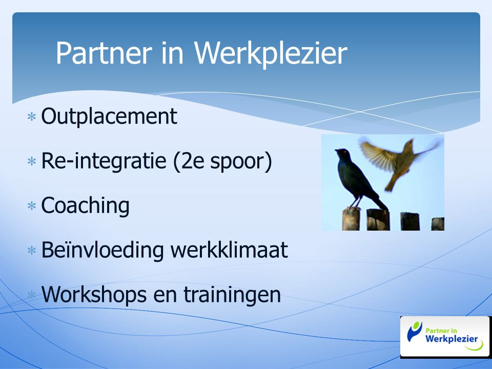  Outplacement  Re-integratie (2e spoor)  Coaching  Beïnvloeding werkklimaat  Workshops en trainingen Partner in Werkplezier